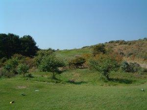 open golf zandvoort
